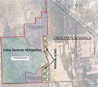 Lake Swamp Mitigation Map